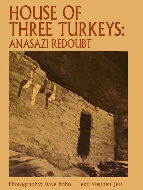 House-of-Three-Turkeys-book